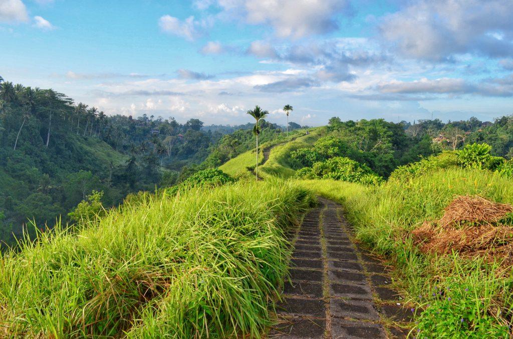 Campuhan-Ridgewalk-Ubud