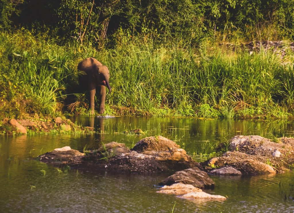 hurulu-eco-park