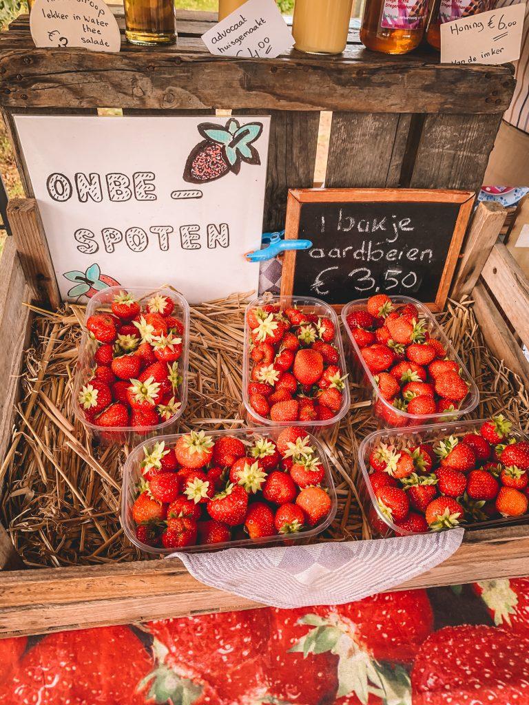 aardbeienboerderij-rozemarrie