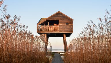 Kiekkaaste-Nieuw-Statenzijl-Vogelkijkhut-Groningen