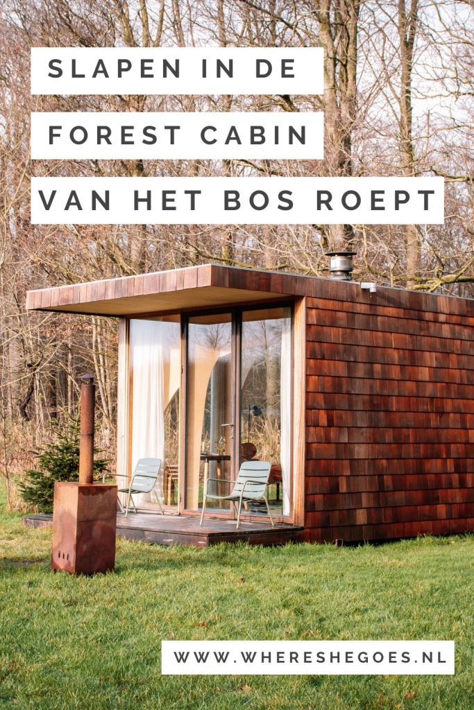 Bijzonder-slapen-in-een-Forest-Cabin-op-camping-Het-Bos-Roept