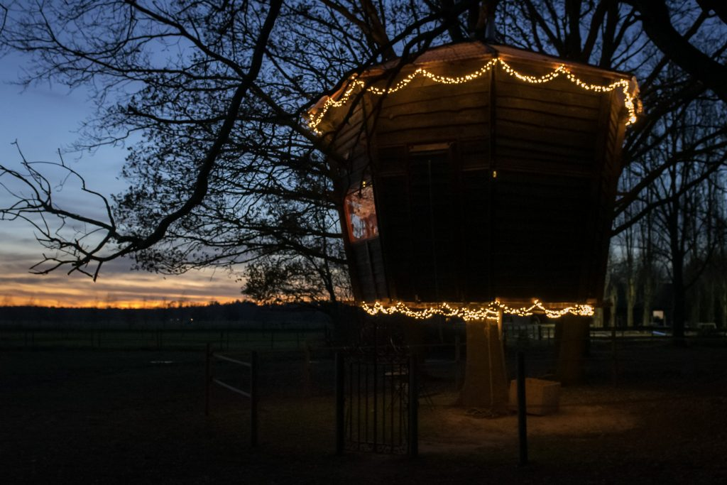Slapen-in-een-boomhut-Treehouse-Goldsworthy