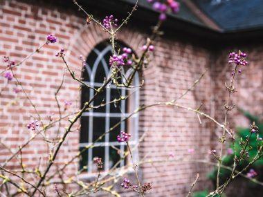 Heilige-Nachten-Overnachten-klooster