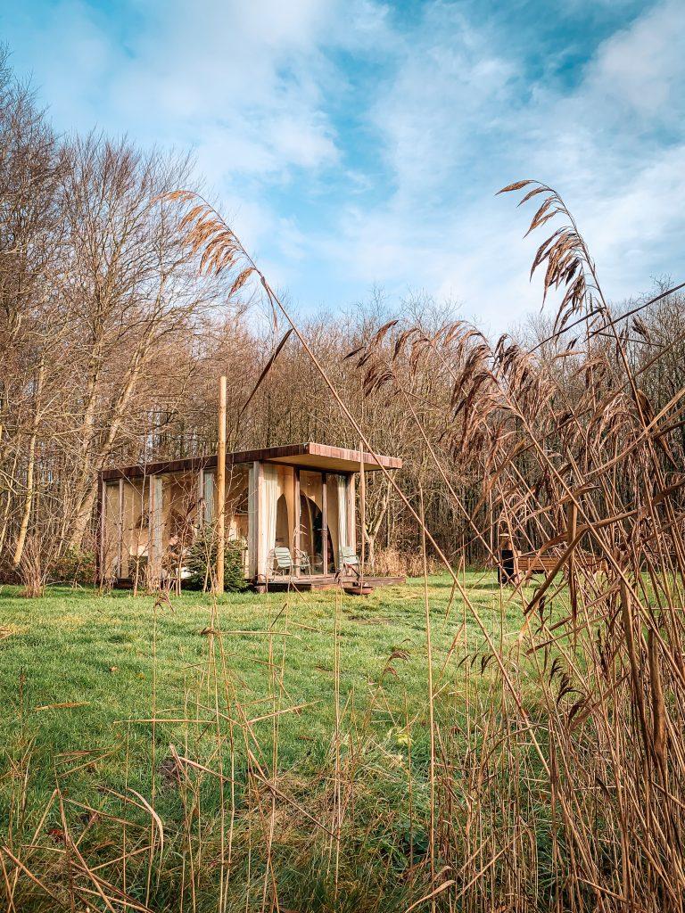 Forest-Cabin-tiny-house-huren