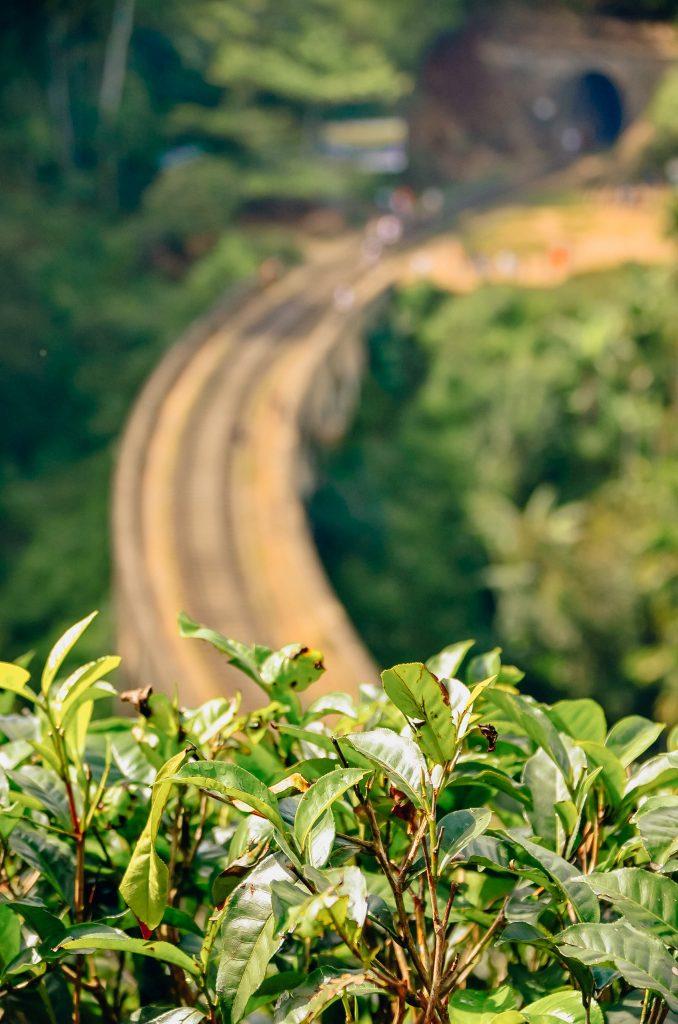 Nine-Arch-Bridge-Ella-Sri-Lanka