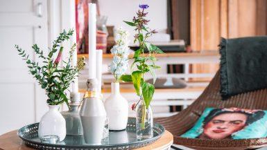 Dijkhuisje-De-Taanman-Grootschermer-Airbnb