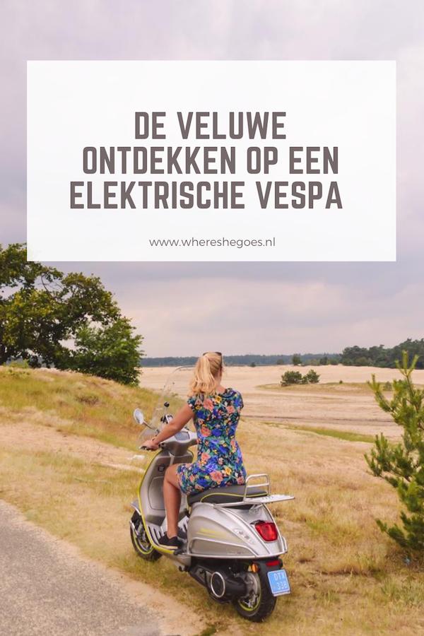 De-Veluwe-ontdekken-op-een-elektrische-Vespa-van-Vespa-Veluwe-Tours-Nederland