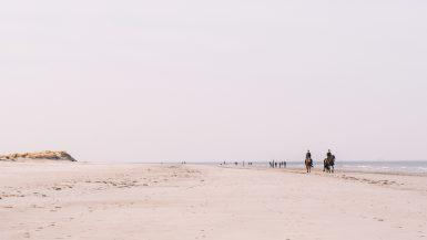 Mooiste-stranden-Schiermonnikoog-paardrijden