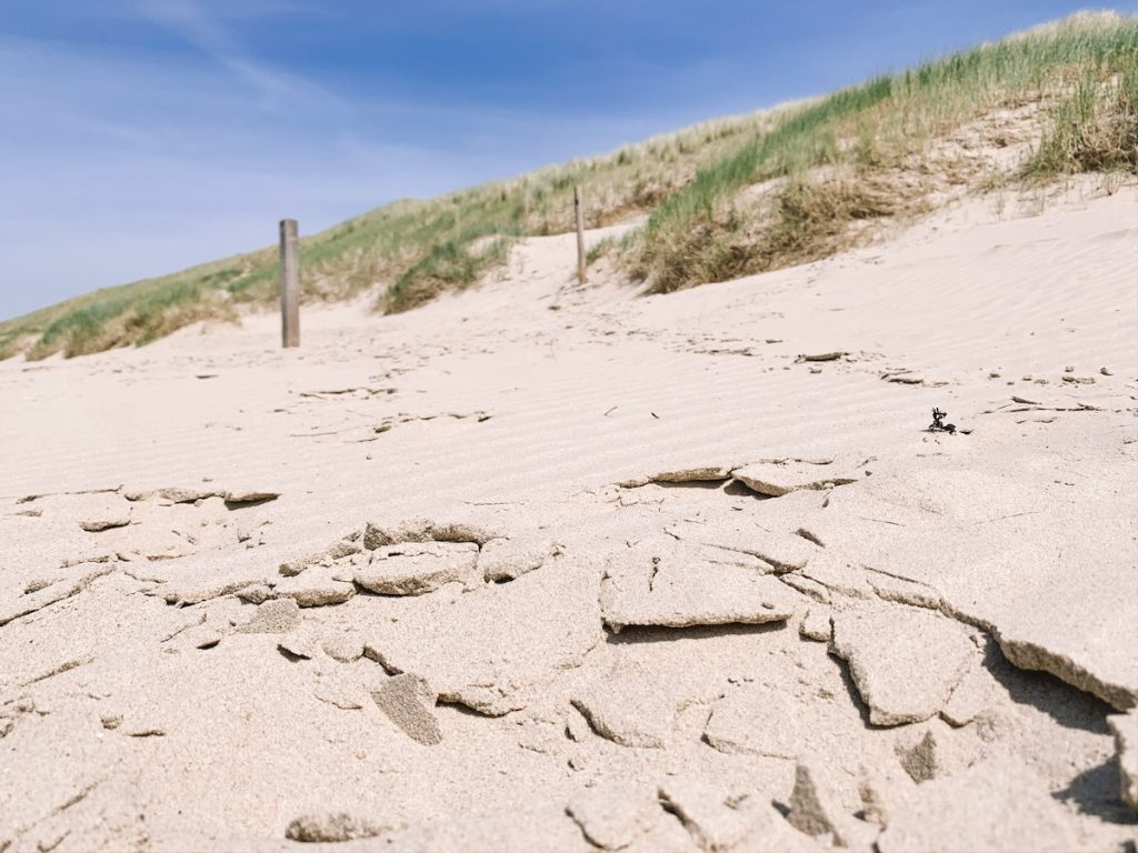 Leukste-uitjes-Noord-Holland--Sint-Maartenszee-stranden-Nederland 1