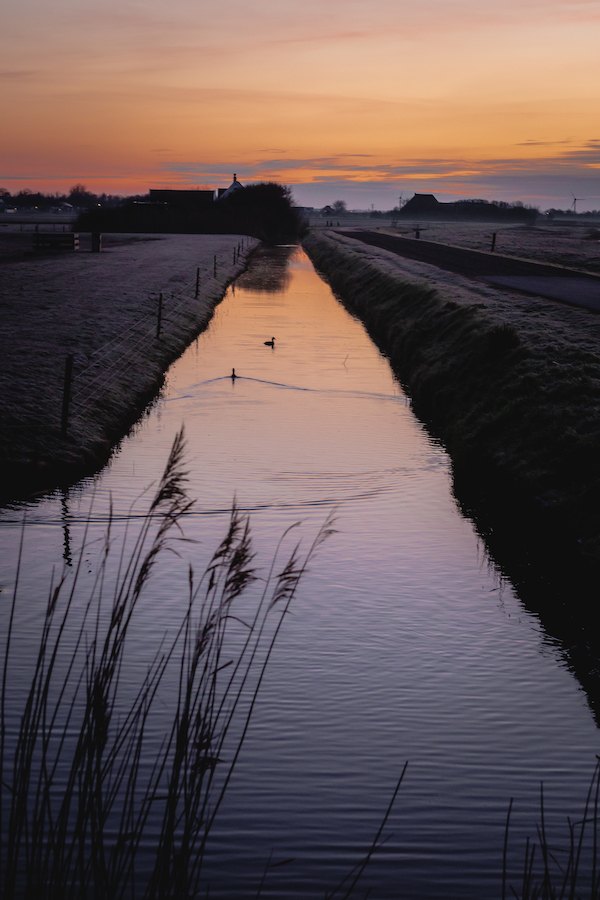 Omgeving-Callantsoog-Noord-Holland-De-Nollen