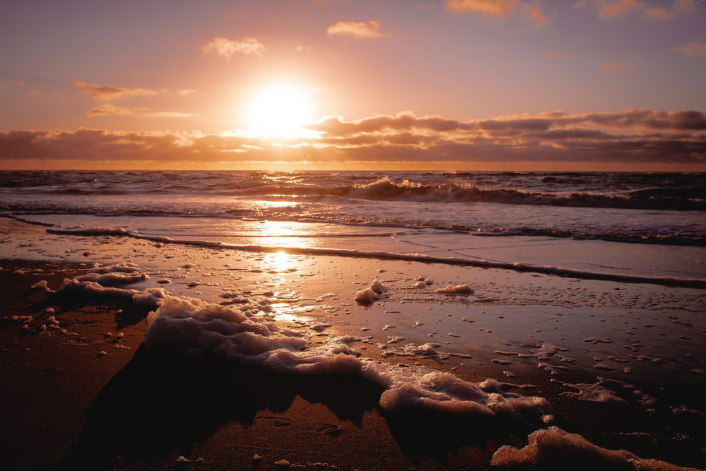 Strand-Petten-aan-zee-Palendorp