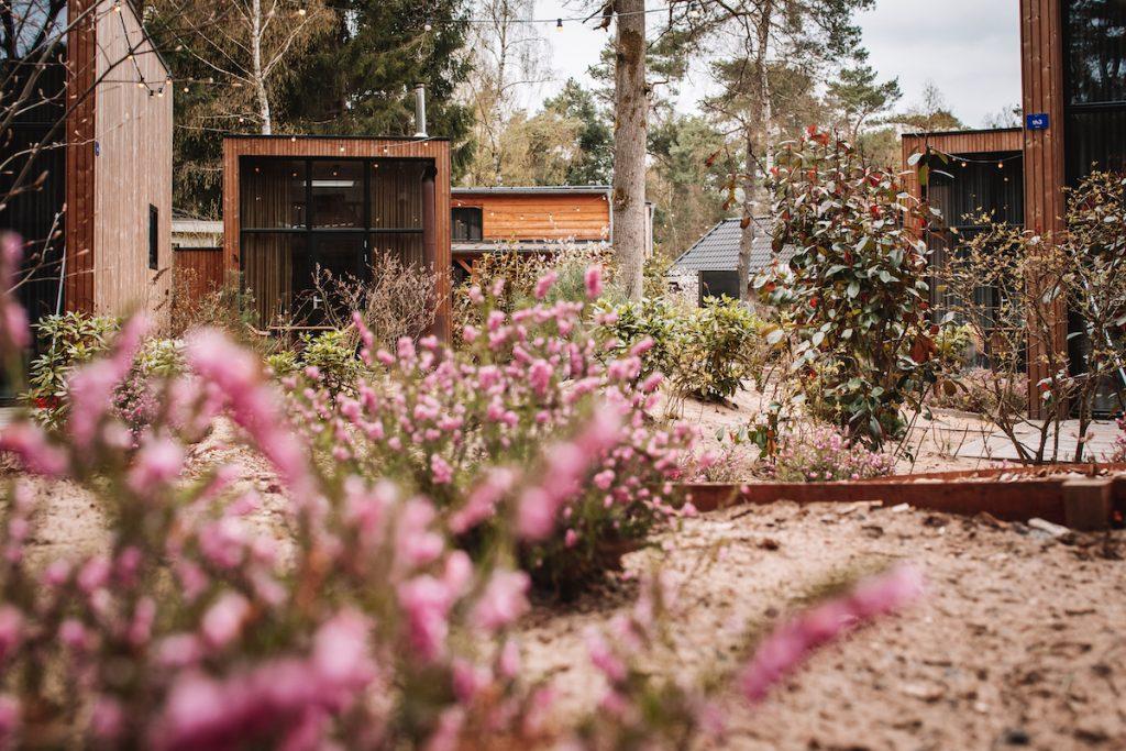 Tiny-house-De-Kleine-Beer-Veluwe-Droompark-Beekbergen