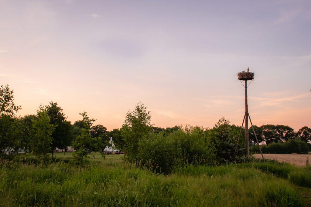 Roadtrip-Nederland-e-camper-Camping-Bij-Ons-in-Groesbeek-Kamperen-glamping-bijzondere-accommodaties