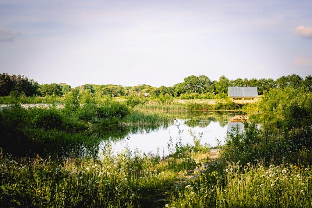 ANNA-cabin-Holenberg