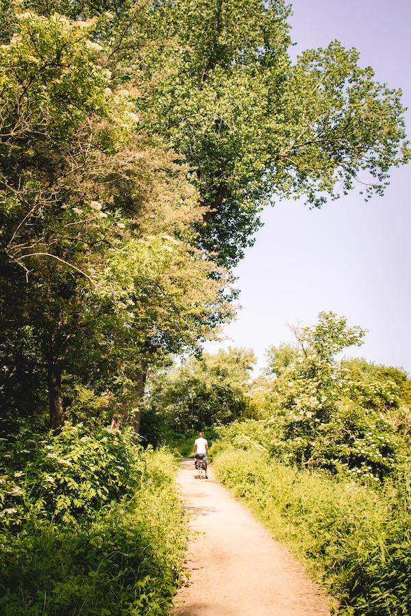 Natuurgebied-Nijmegen-Millingerwaard-fietsen-wandelen