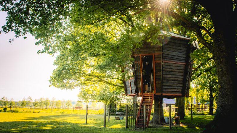 Treehouse-Goldsworthy-boomhut-Nederland-Achterhoek-Halle-Airbnb